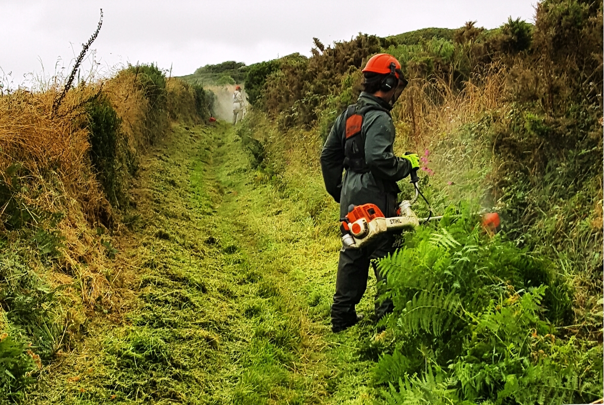 Nartional Park Authority Warden cutting vegetation on the Pembrokeshire Coast Path