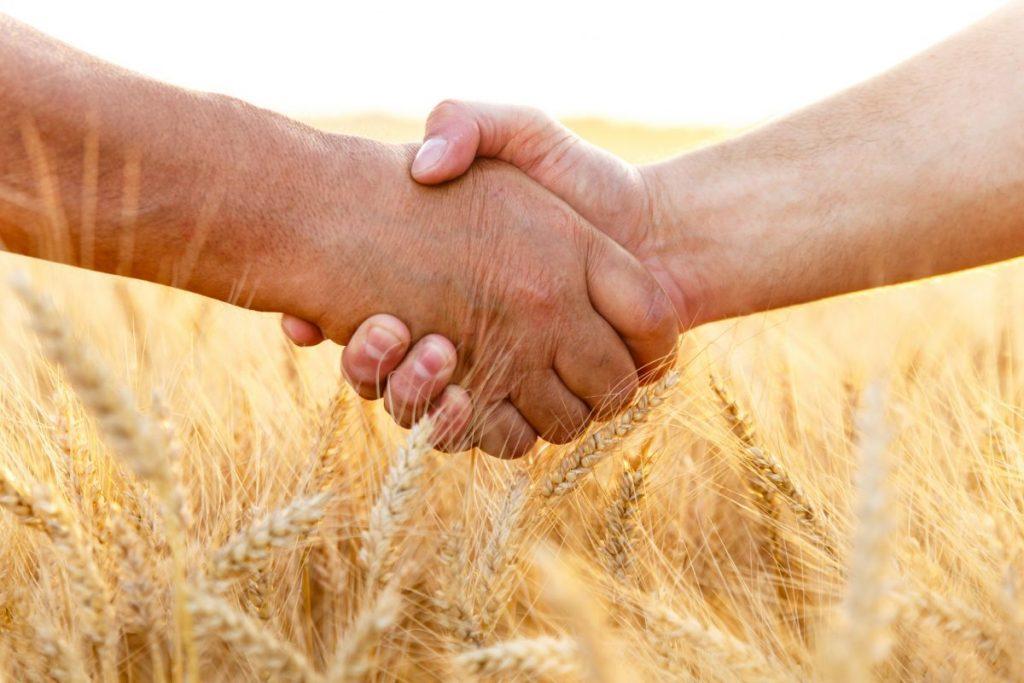 Handshake in wheat field