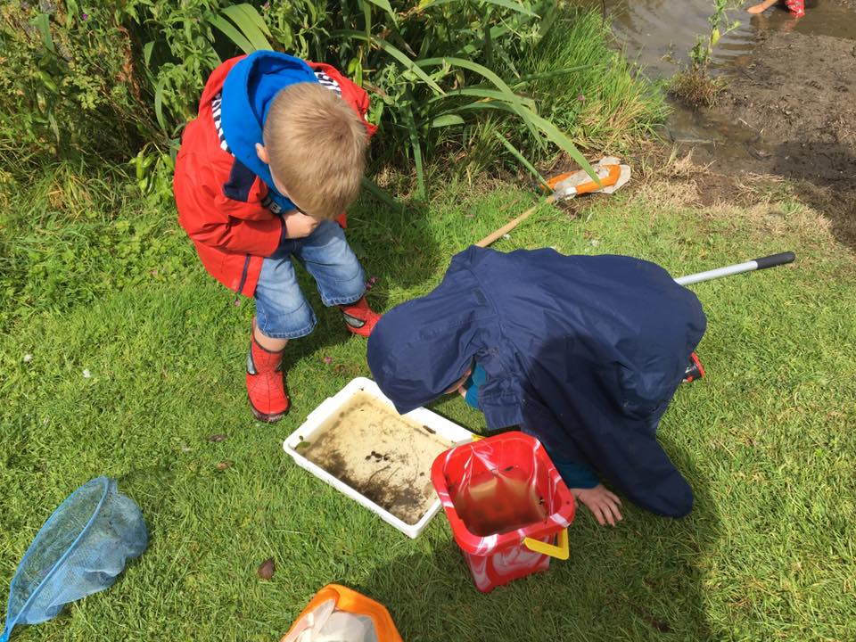 Pond dipping at Llwyngwair Manor Holiday Park, Pembrokeshire, Wales UK as part of the Naturally Connected Project