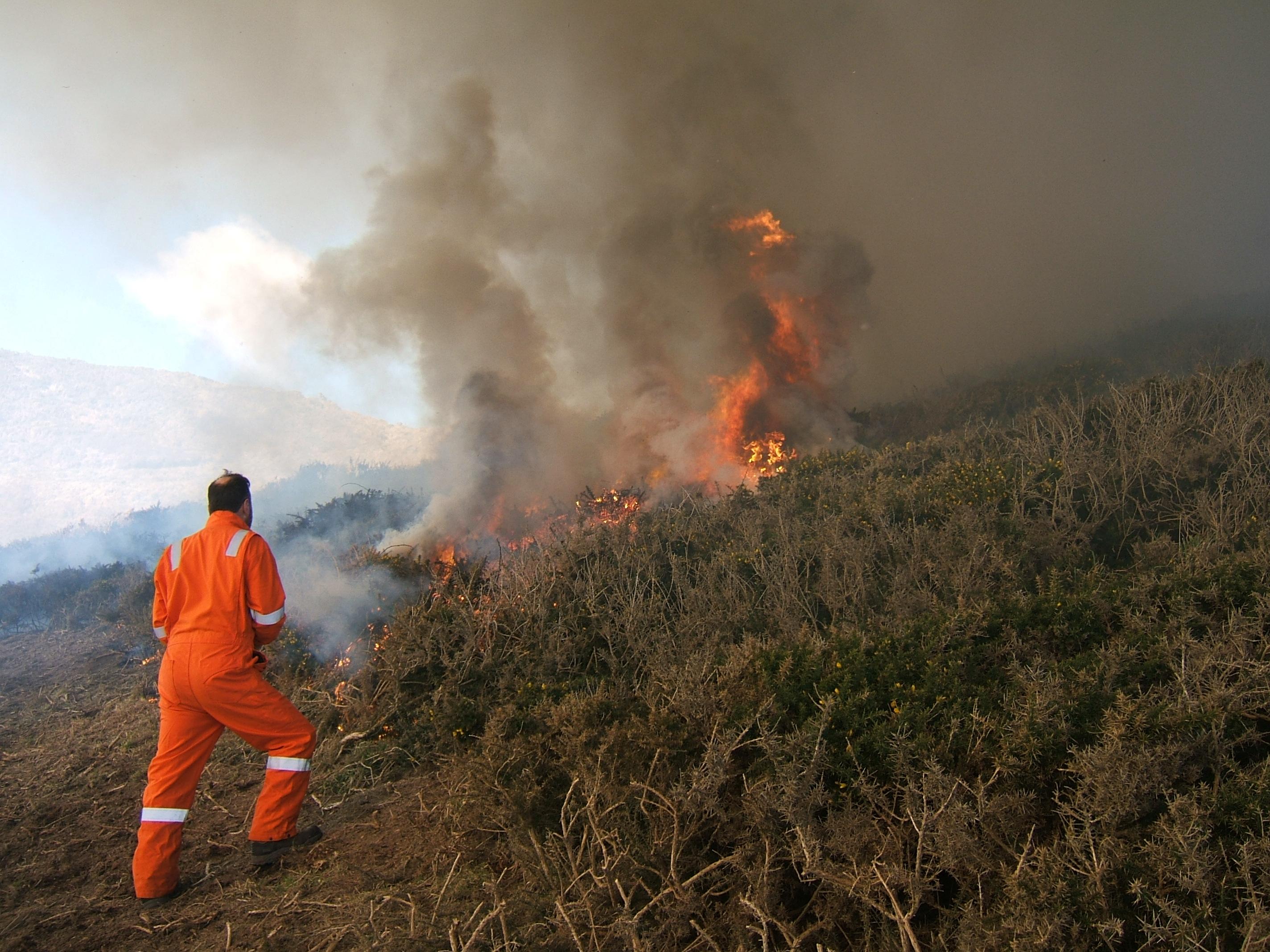 Controlled burn at Tresinwen, Pembrokeshire, Wales, UK
