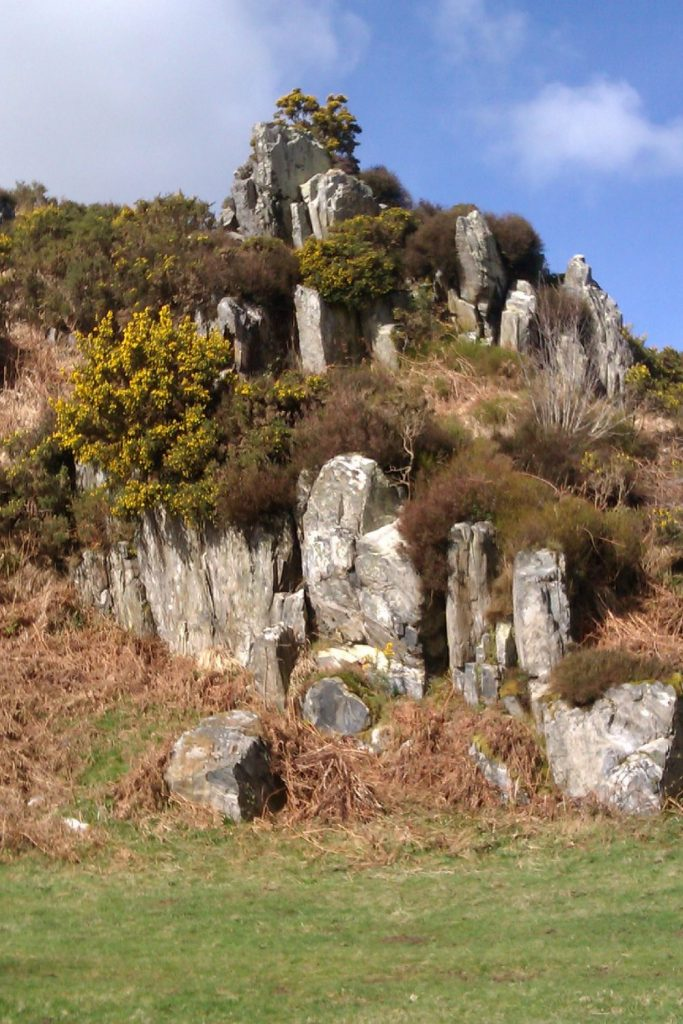 Craig Rhosyfelin, Preseli Hills