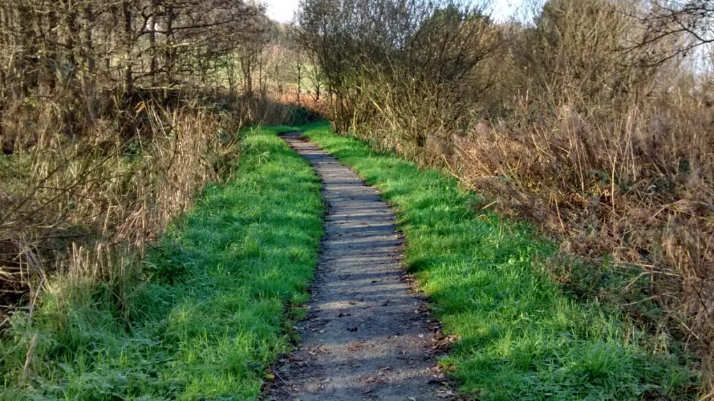Poppit Marsh Wheelchair Path