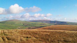 Rosebush from Mynydd Castlebythe, Puncheston