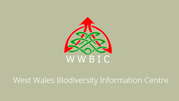 West Wales Biodiversity Information Centre (WWBIC) Logo