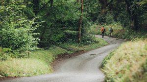 Hikers walking down a track in Minwear Woods, Pembrokeshire