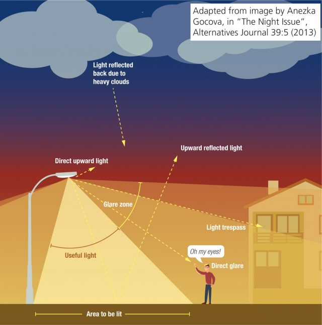 """Infographic illustrating the different components of light pollution and what """"good"""" lighting looks like. Showing light reflected back due to heavy clouds, direct upward light, upward reflected light, light trespass, direct glare, useful light and glare zone."""