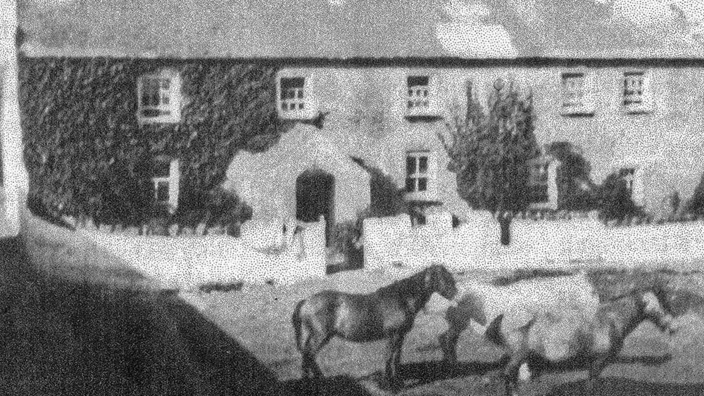 Black and white photograph of a farmhouse with horses outside