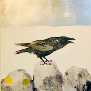 Image of Bird on Rock
